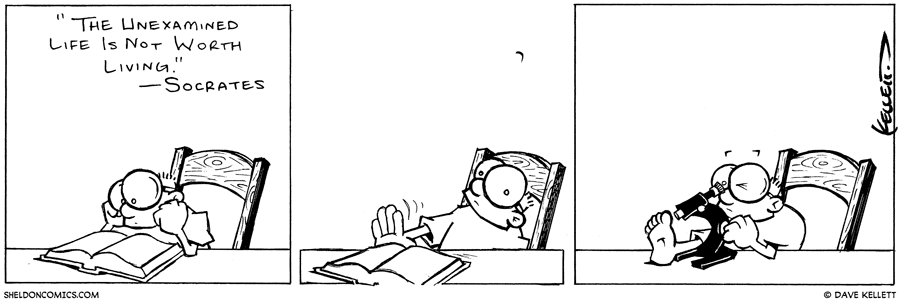 strip for April / 29 / 2003