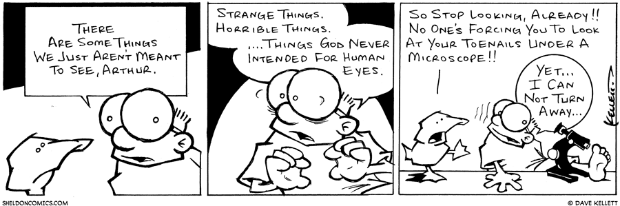 strip for May / 1 / 2003