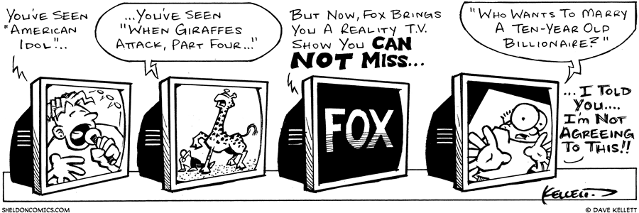 strip for May / 13 / 2003
