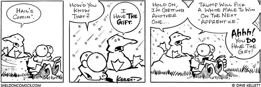 strip for January / 5 / 2005