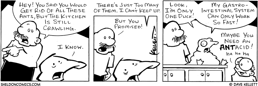 strip for January / 29 / 2005