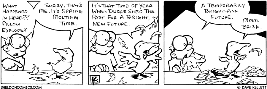 strip for June / 3 / 2005