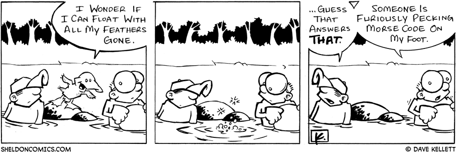 strip for June / 8 / 2005