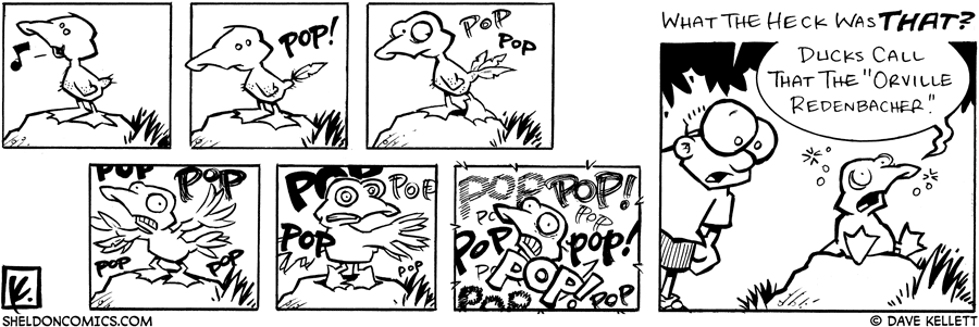 strip for June / 9 / 2005
