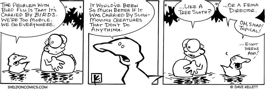 strip for November / 5 / 2005