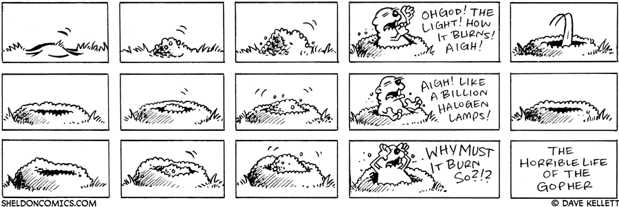 strip for November / 17 / 2005