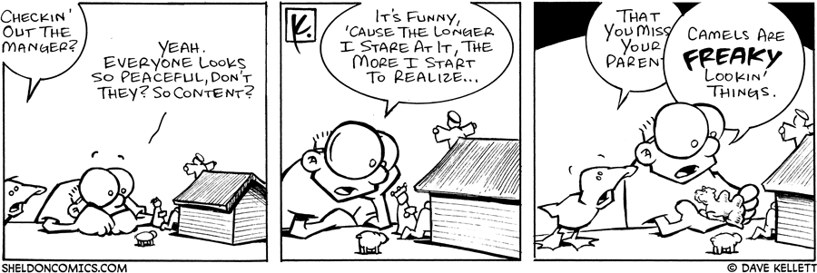 strip for December / 16 / 2005
