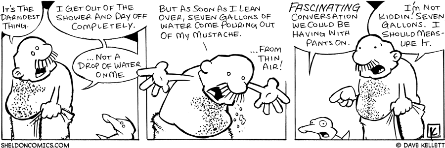 strip for May / 17 / 2006