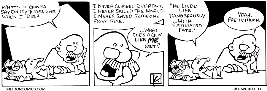 strip for August / 29 / 2006