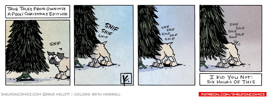 strip for December / 9 / 2006