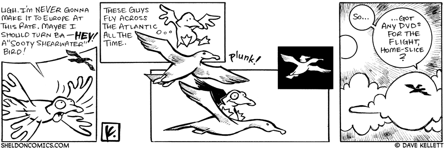 strip for March / 17 / 2007