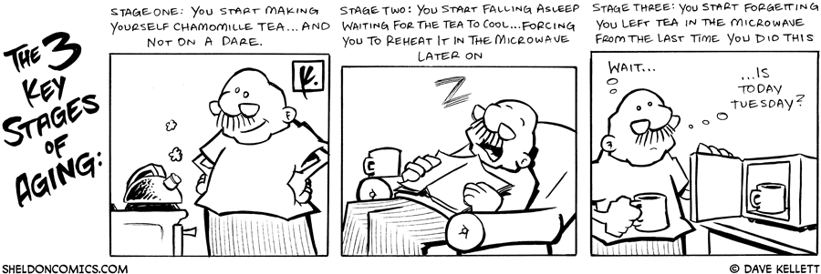 strip for April / 13 / 2007