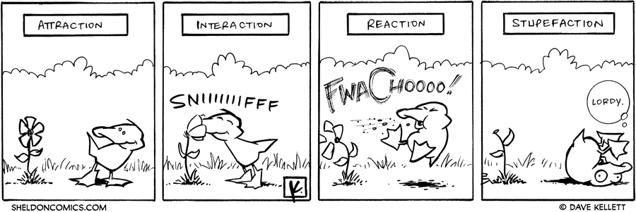 strip for May / 21 / 2007
