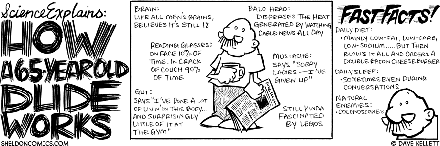 strip for June / 4 / 2007