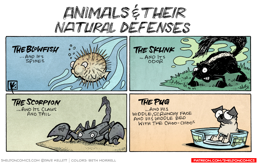 strip for July / 15 / 2007 - What are some natural defenses?