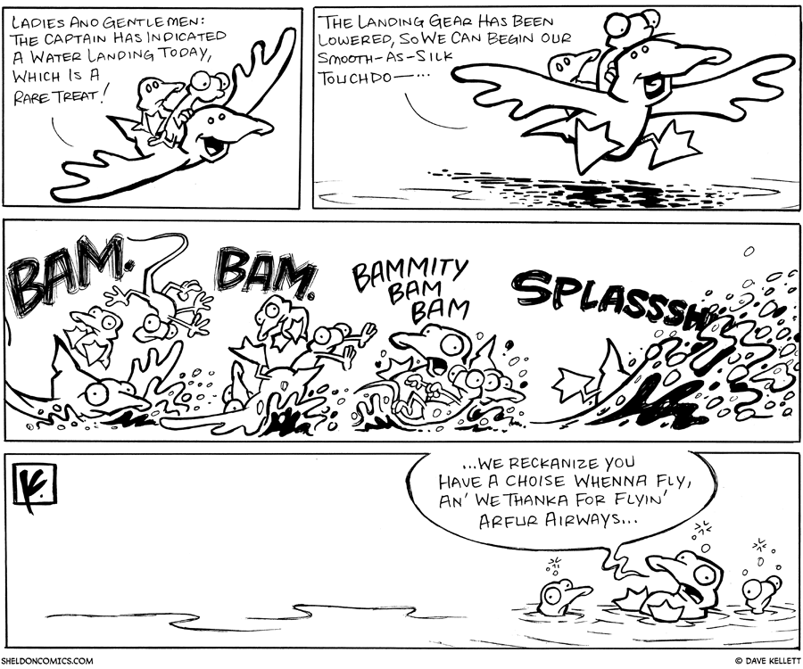 strip for August / 4 / 2007 - What does a water landing look like?