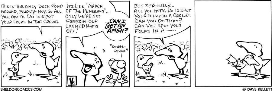 strip for August / 11 / 2007 - Will this baby duck find it's folks?