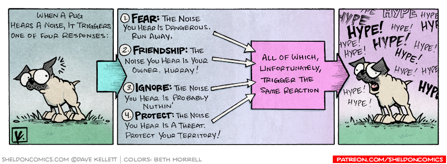 strip for August / 27 / 2007 - What does a noise mean to Pugs?