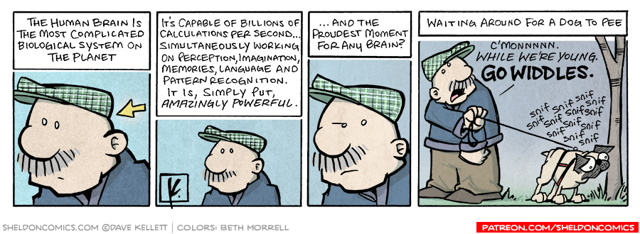 strip for October / 9 / 2007 - What is the proudest moment of the human brain?