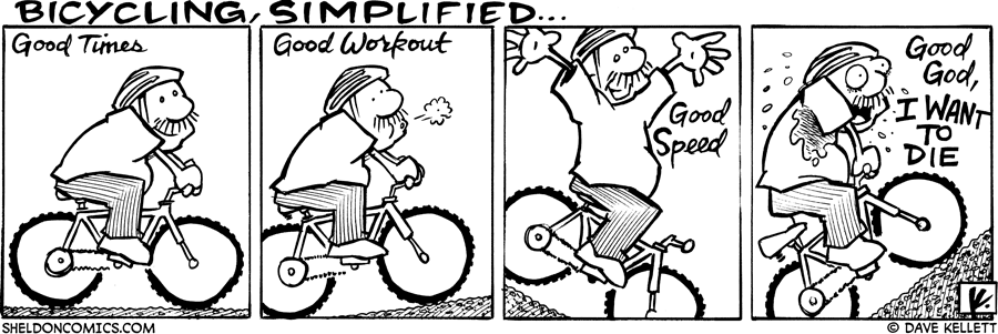 strip for November / 5 / 2007 - What is bicycling all about?