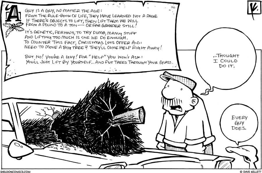strip for December / 17 / 2007 - What do guys try to do at Christmas?