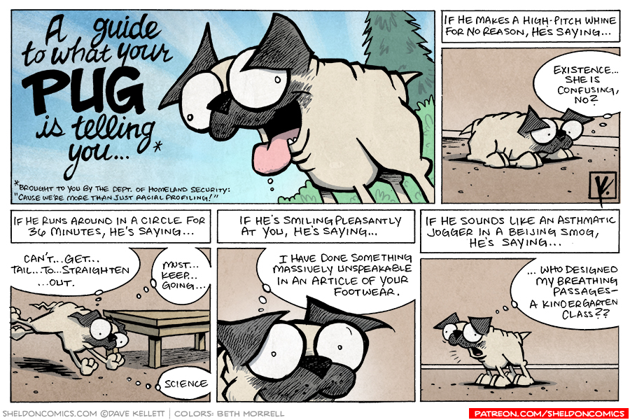 strip for February / 24 / 2008 - What is your Pug telling you?