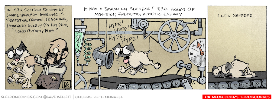 strip for March / 13 / 2008 - How do you fully utilize a Pug's potential?