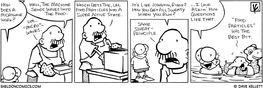 strip for June / 20 / 2008 - How does a microwave work?