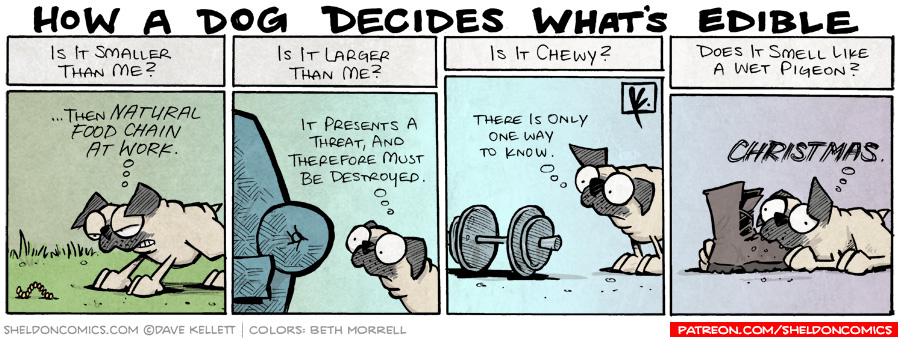 strip for July / 18 / 2008 - How does a dog decide what's edible?