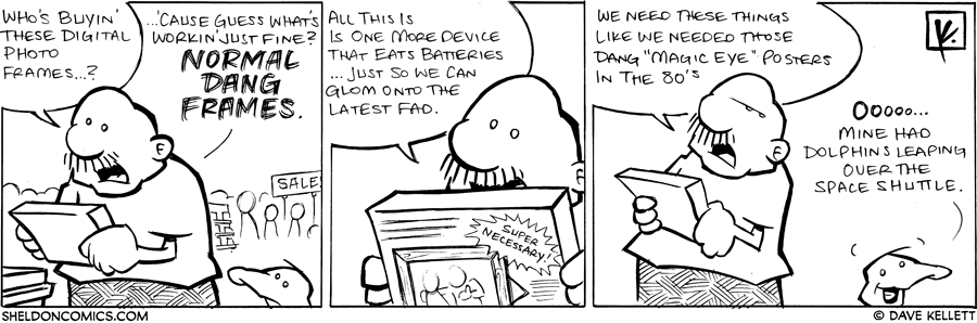 strip for July / 26 / 2008 - Who's buying digital photo frames?