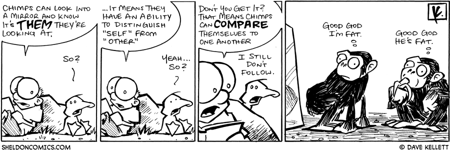 strip for October / 23 / 2008 - Chimps can do what?