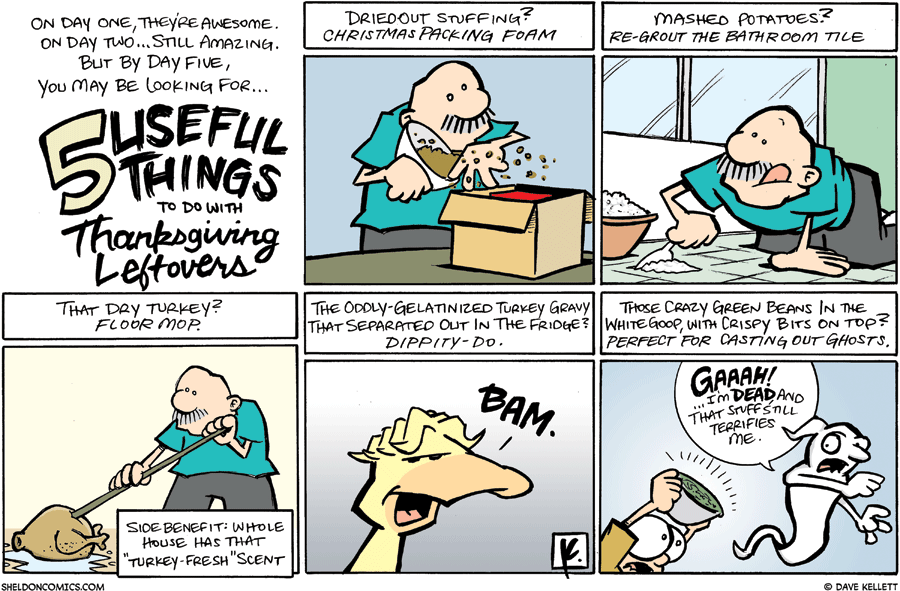 strip for November / 30 / 2008 - What do you do with Thanksgiving leftovers?