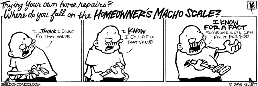 strip for February / 3 / 2009 - Where do you fall on the Homeowner's macho scale?