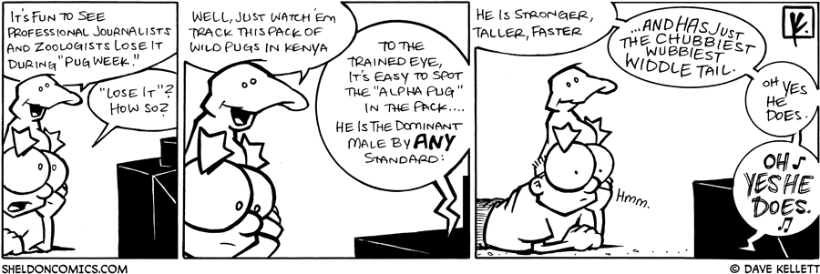 strip for March / 17 / 2009 - What is it fun to see Arthur?