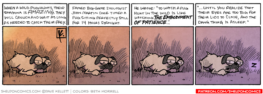strip for March / 19 / 2009 - A wild pugs waits for...