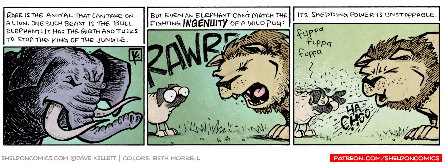 strip for March / 20 / 2009 - What is rare?