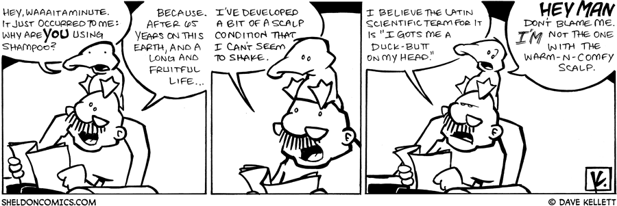 strip for April / 11 / 2009 - Why is Gramp using shampoo?