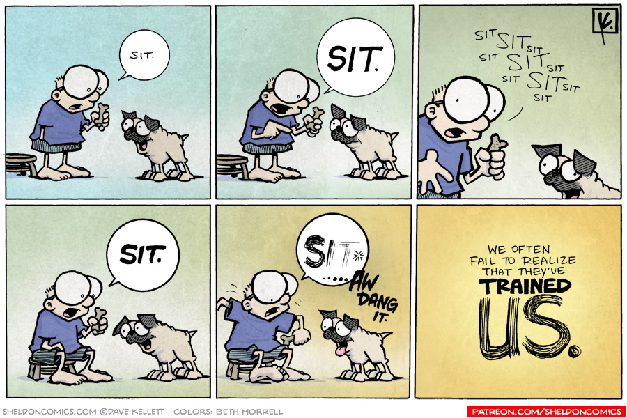 strip for May / 5 / 2009 - Sheldon trains Oso and...