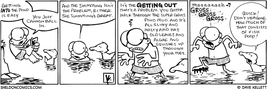 strip for July / 6 / 2009 - What does Sheldon think of the pond?