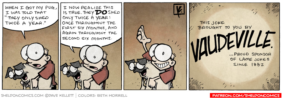 strip for July / 28 / 2009 - What was Sheldon told when he got his pug?