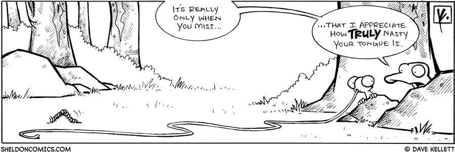 strip for August / 1 / 2009 - It's really only when you miss...