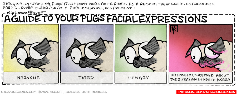 strip for August / 8 / 2009 - What does your Pug's facial expressions mean?