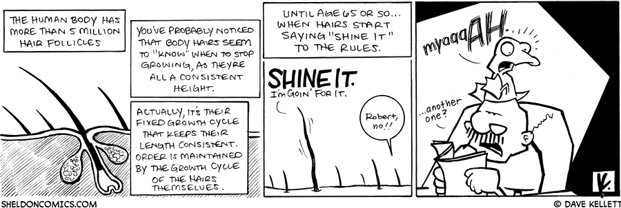 strip for August / 13 / 2009 - What does the human body have more than 5 million of?