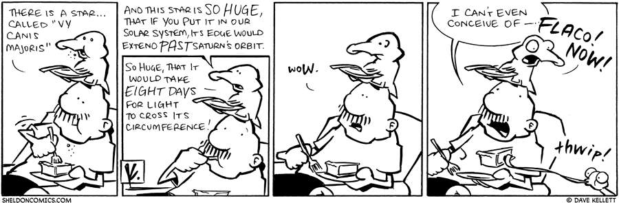 strip for December / 1 / 2009 - Thre is a star...