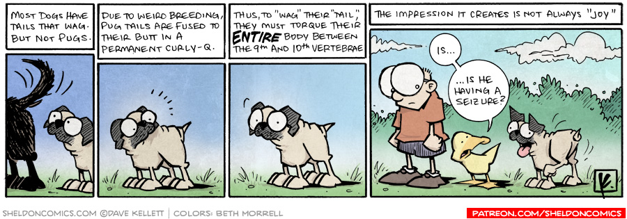 strip for December / 28 / 2009 - What do most dogs have that pugs don't?