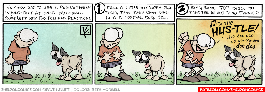 strip for December / 29 / 2009 - How does Sheldon react to a pug tail wag?