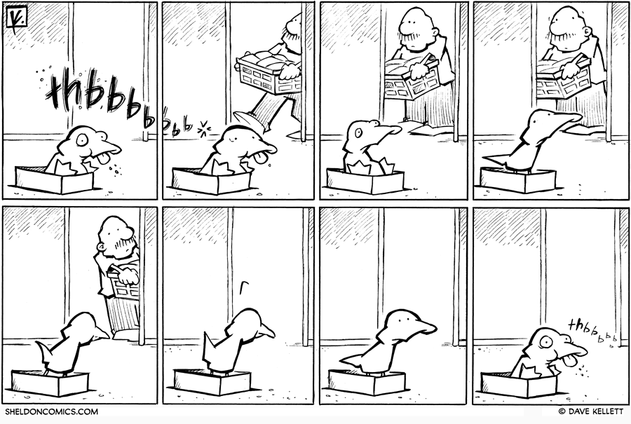 strip for June / 9 / 2010 - What happens while Arthur is in the shoebox?