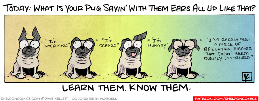 strip for September / 13 / 2010 - What is your pug sayin' with them ears all up like that?