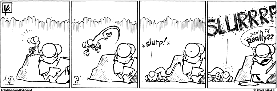 strip for October / 14 / 2010 - What does Flaco see?