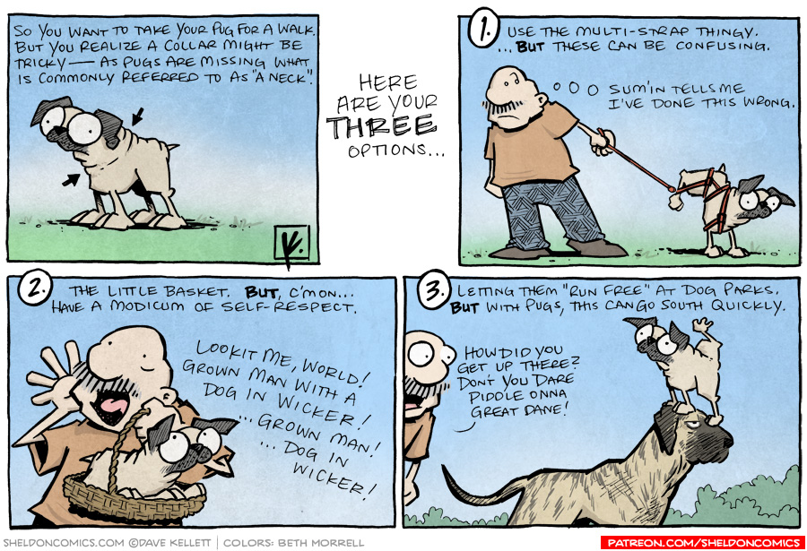 strip for January / 19 / 2011 - What do you do when you want to take your Pug on a walk?